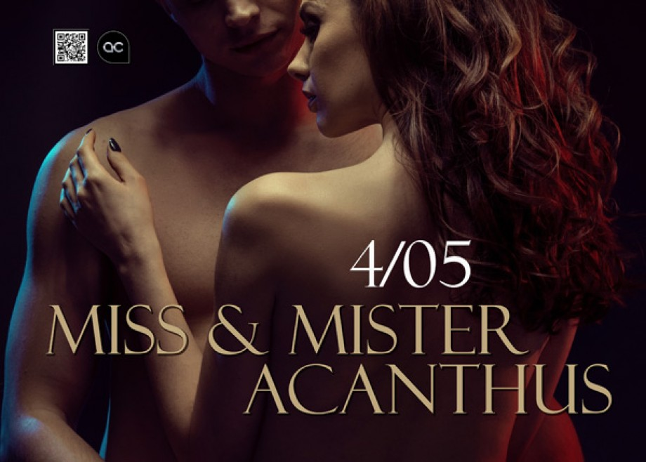 Miss Mister Acanthus - Events - Acanthus